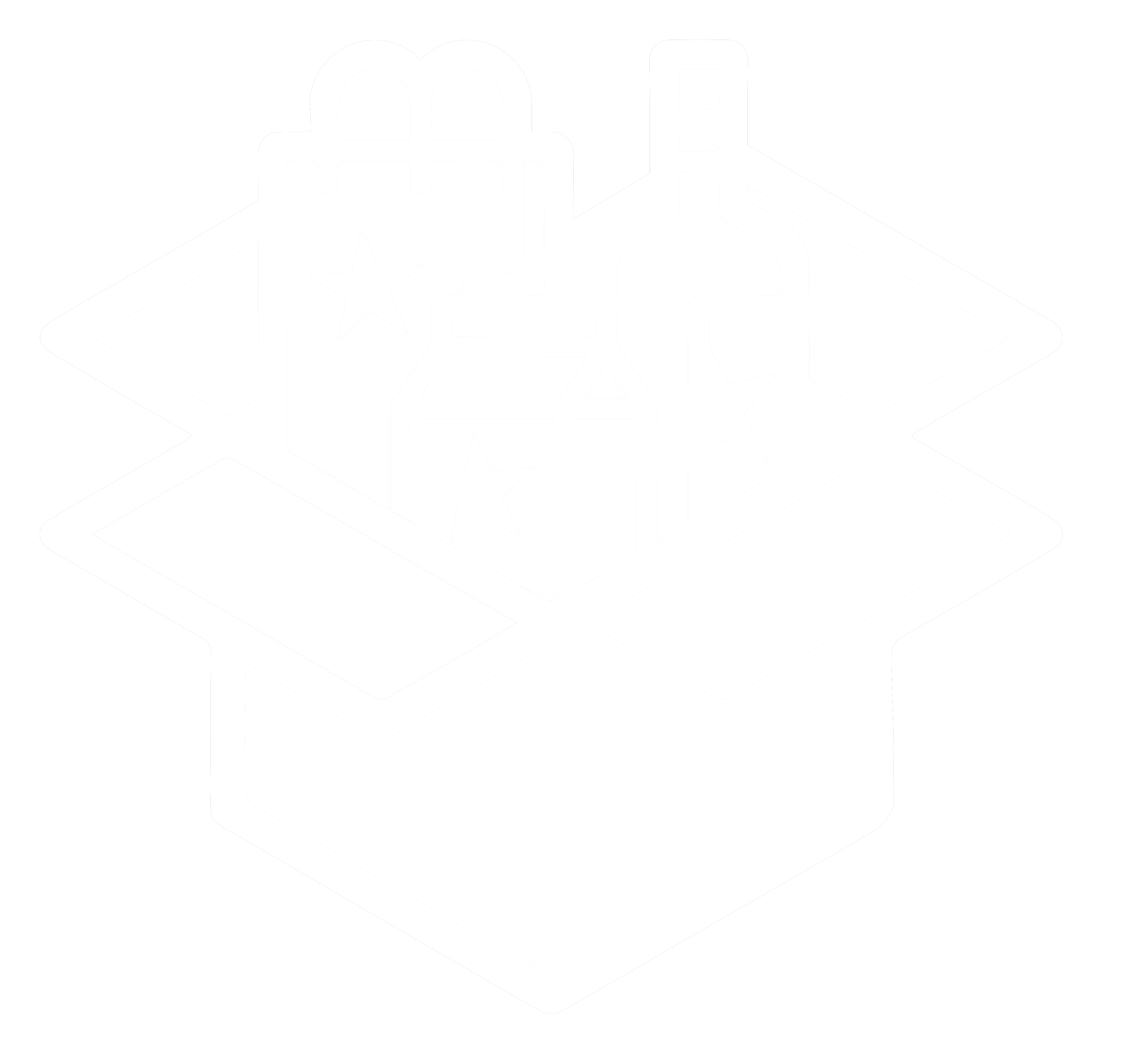 packaging icon White
