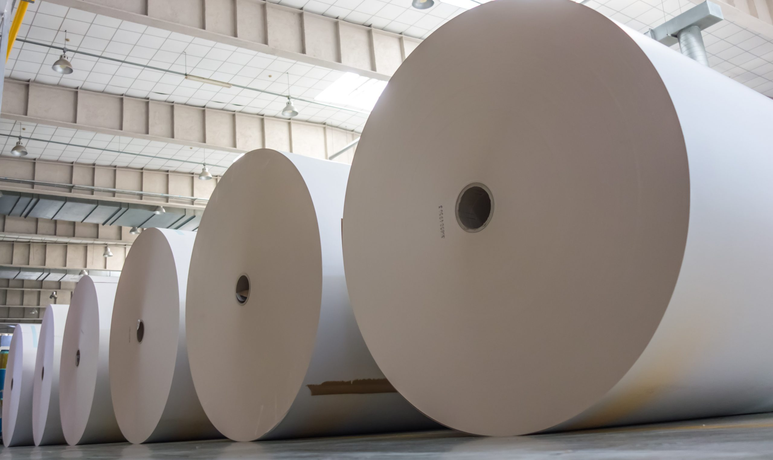 Big,White,Paper,Rolls,Placed,On,The,Floor